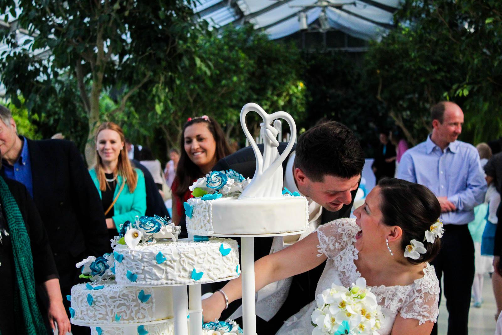 Hochzeit in einer Oase