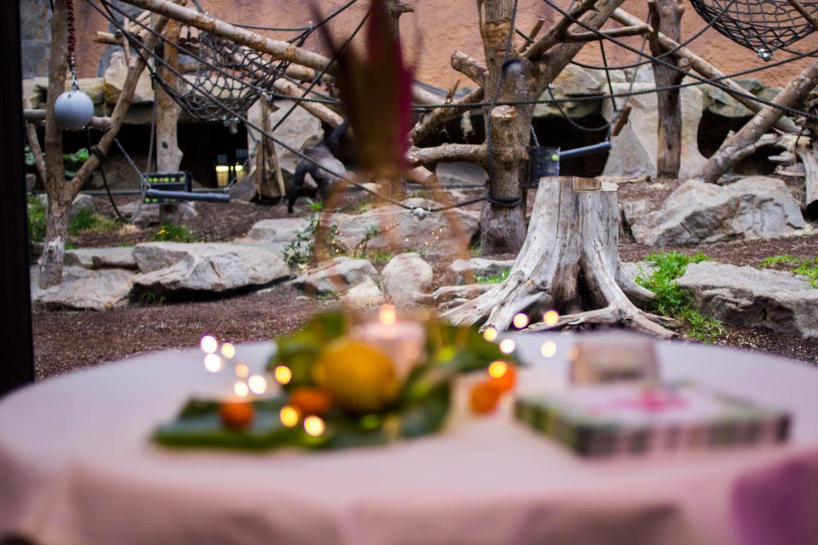 Im Tierhaus seien Hochzeit planen