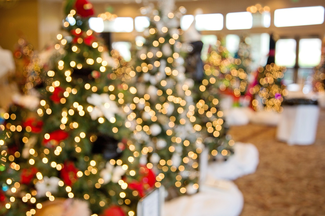 zum Nikolaus-Menü die Christbäume liefern
